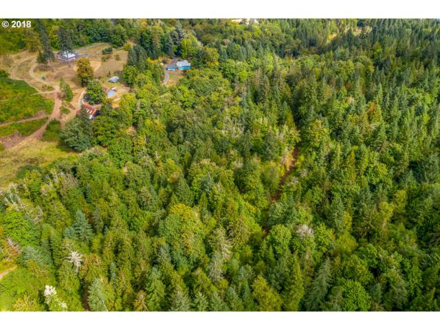 Carter Ln #601, Lowell, OR 97452 (MLS #18347787) :: Song Real Estate