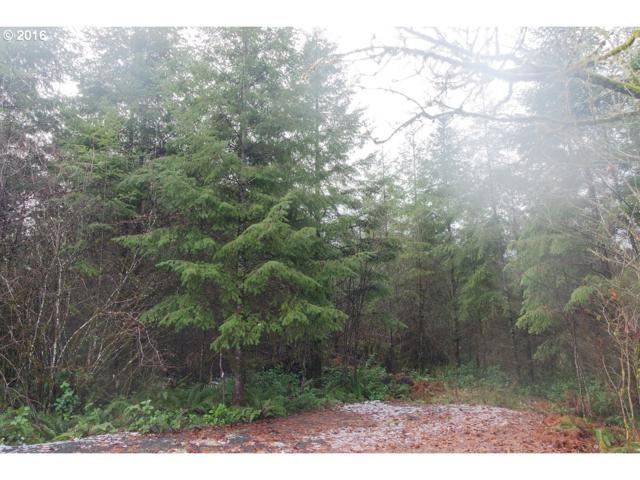 132 Steveson Rd, Chehalis, WA 98532 (MLS #18357607) :: Hatch Homes Group