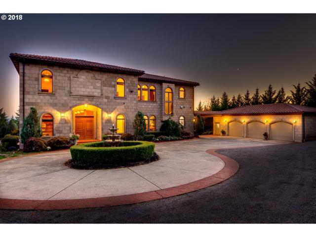 20700 NE 276TH Way, Battle Ground, WA 98604 (MLS #18359830) :: Matin Real Estate