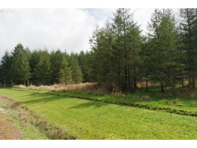 5134 Nesbit Loop Rd, Kelso, WA 98626 (MLS #18371824) :: Cano Real Estate