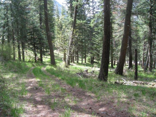 0 Tram Lane, Wallowa Lake, OR 97846 (MLS #18383551) :: Team Zebrowski