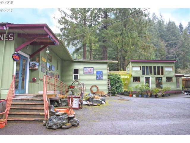 17050 Wilson River Hwy, Tillamook, OR 97141 (MLS #18383939) :: Harpole Homes Oregon