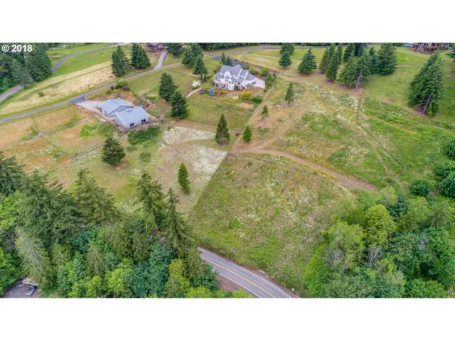 5572 Green Mountain Rd, Woodland, WA 98674 (MLS #18389550) :: Premiere Property Group LLC