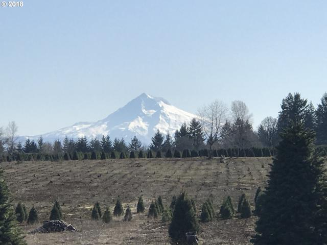 16710 S Gerber Rd, Oregon City, OR 97045 (MLS #18394832) :: Fox Real Estate Group