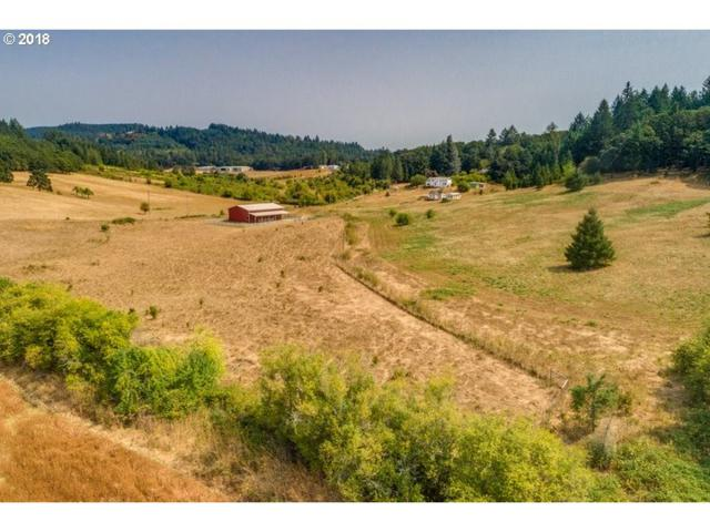 4887 NW Mcloughlin Dr, Yamhill, OR 97148 (MLS #18400268) :: The Sadle Home Selling Team