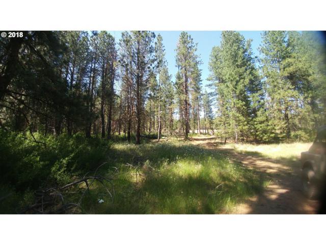 Pine Creek Rd, Bickleton, WA 99322 (MLS #18403880) :: The Lynne Gately Team
