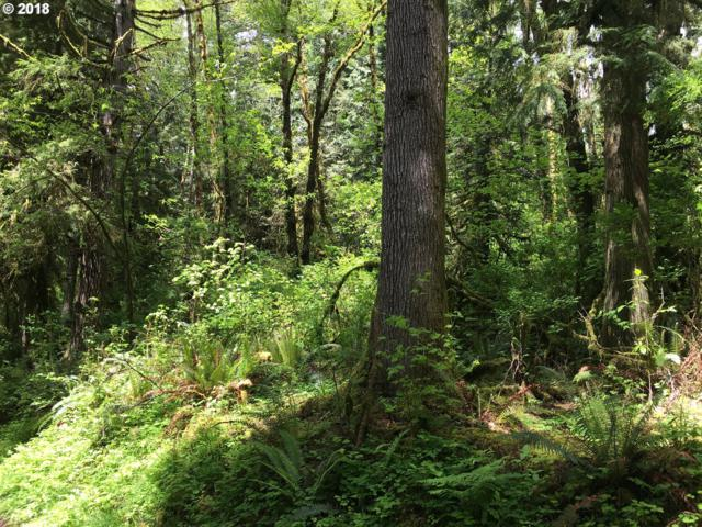 0 Schraum Rd, Cathlamet, WA 98612 (MLS #18406333) :: The Dale Chumbley Group