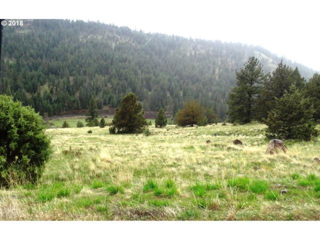 0 Martin Ln, Long Creek, OR 97856 (MLS #18421150) :: Realty Edge