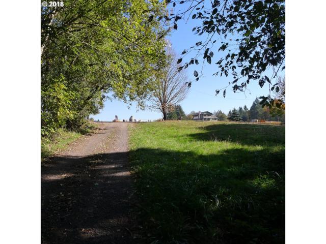 1784 N 3RD Way, Ridgefield, WA 98642 (MLS #18423760) :: Townsend Jarvis Group Real Estate