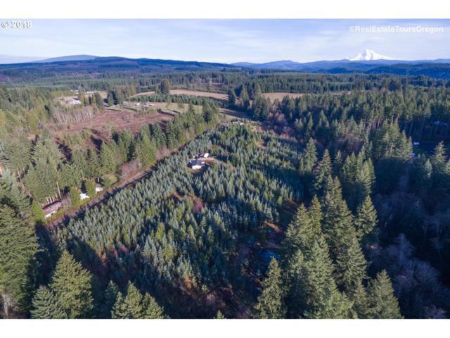 43418 SE Tress Trail Rd, Sandy, OR 97055 (MLS #18425219) :: Stellar Realty Northwest