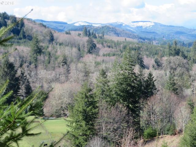 Skees Rd #28, Lebam, WA 98554 (MLS #18426417) :: Harpole Homes Oregon