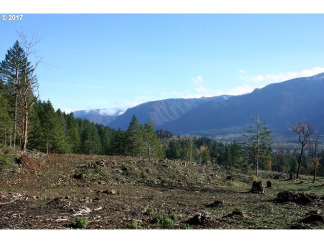 Woodard Creek Rd, North Bonneville, WA 98639 (MLS #18429383) :: Premiere Property Group LLC