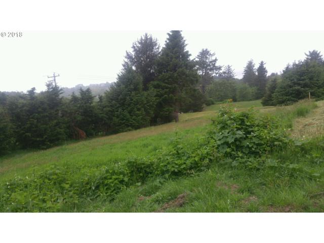 4100 Pacific Overlook Dr, Neskowin, OR 97149 (MLS #18430823) :: R&R Properties of Eugene LLC