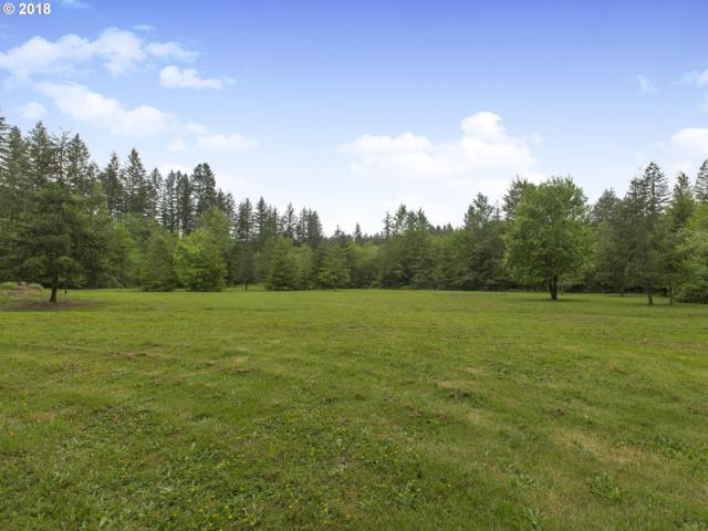 22109 NE 233RD St, Battle Ground, WA 98604 (MLS #18433569) :: TLK Group Properties