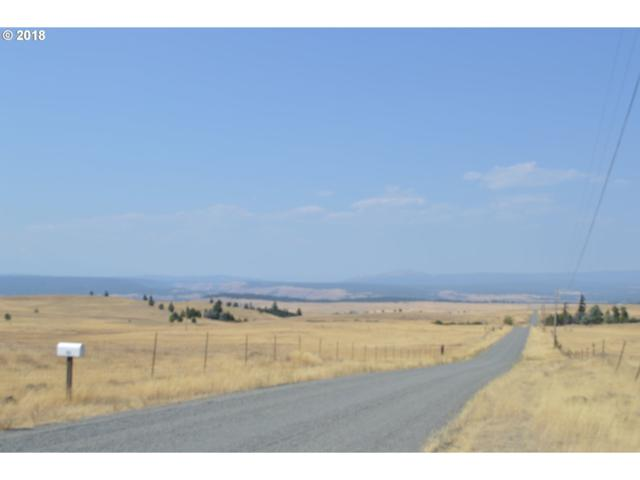 358 Harms Rd, Centerville, WA 98613 (MLS #18435192) :: The Dale Chumbley Group