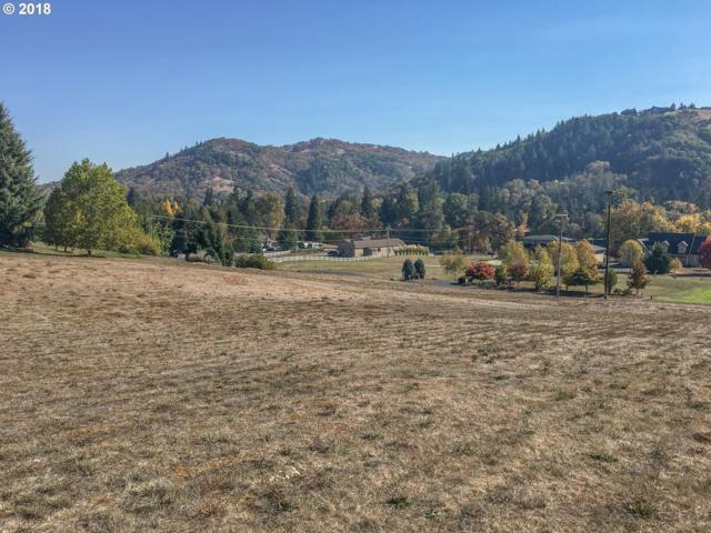 0 Rio Vista Ln, Roseburg, OR 97471 (MLS #18435392) :: Townsend Jarvis Group Real Estate