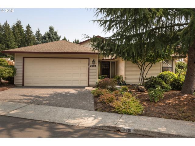 2901 SE 155TH Ave, Vancouver, WA 98683 (MLS #18440757) :: Cano Real Estate