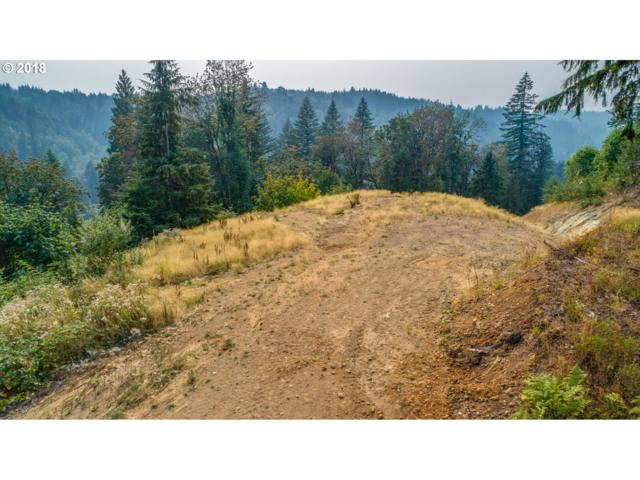 3232 Canyon Creek-Block 2 Rd Lot 2, Washougal, WA 98671 (MLS #18442764) :: The Dale Chumbley Group