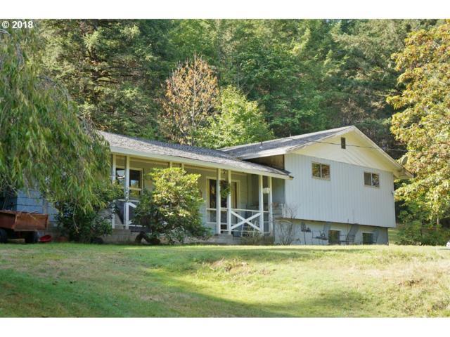 10900 NW Rex Brown Rd, Carlton, OR 97111 (MLS #18449366) :: Hatch Homes Group