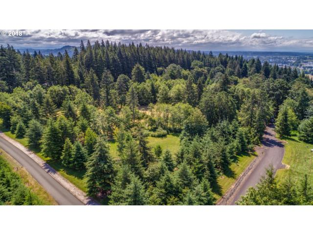 117 Skyview Rd, Woodland, WA 98674 (MLS #18452860) :: TLK Group Properties