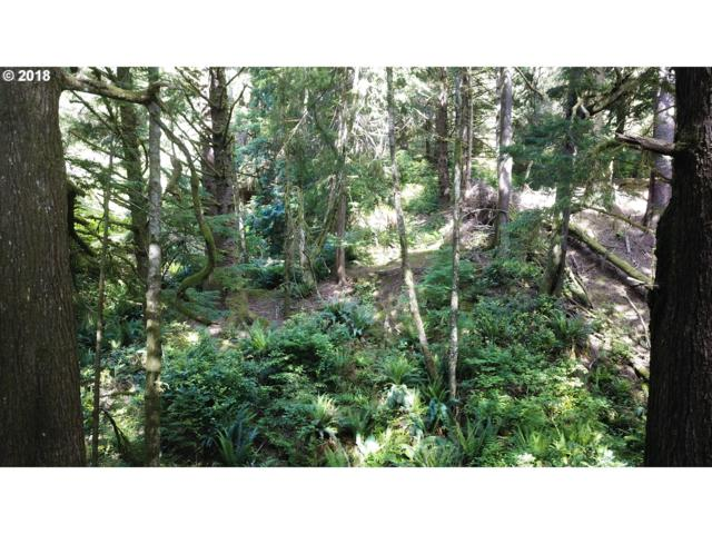 Ocean View Ave, Arch Cape, OR 97102 (MLS #18466093) :: Gustavo Group