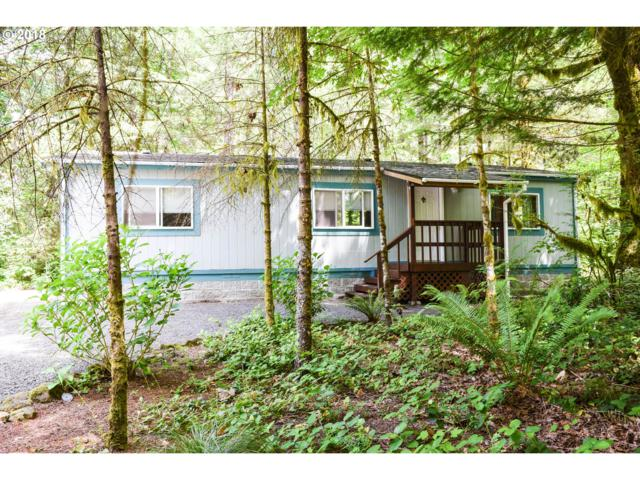 14665 Lewis River Rd, Ariel, WA 98603 (MLS #18466473) :: Cano Real Estate