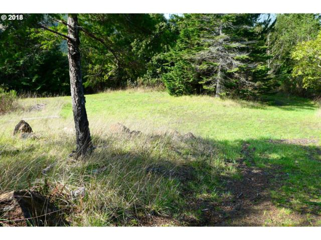 Black Tail Spur #2800, Gold Beach, OR 97444 (MLS #18475247) :: Cano Real Estate