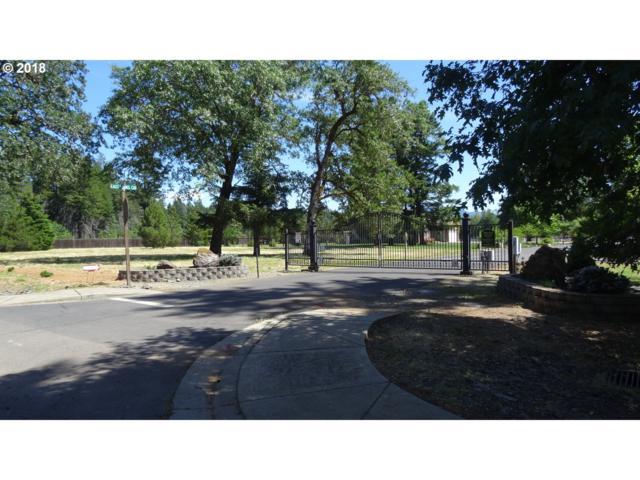 587 East Forks Cir, Cave Junction, OR 97523 (MLS #18482773) :: R&R Properties of Eugene LLC