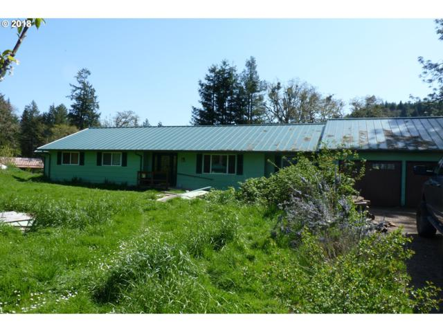 3720 State Highway 38, Drain, OR 97435 (MLS #18485858) :: Keller Williams Realty Umpqua Valley