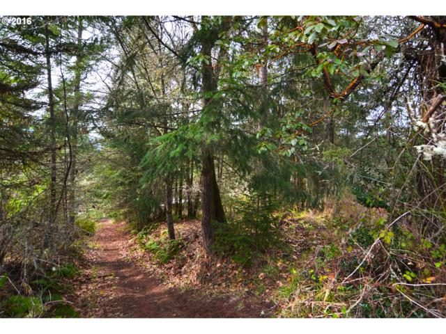 Wendell Ln, Eugene, OR 97405 (MLS #18488417) :: Song Real Estate