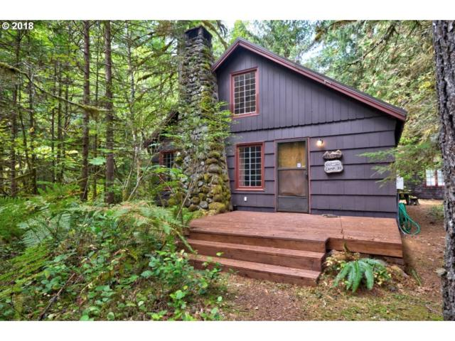 27803 E Road 20, Rhododendron, OR 97049 (MLS #18493167) :: Portland Lifestyle Team