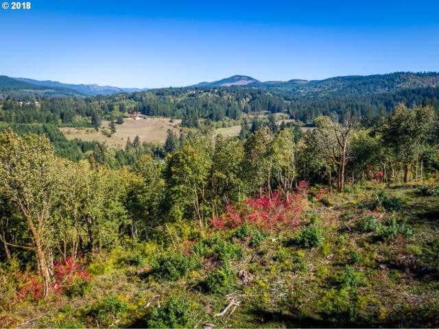 0 Mt Pleasant Rd, Washougal, WA 98671 (MLS #18509700) :: Next Home Realty Connection