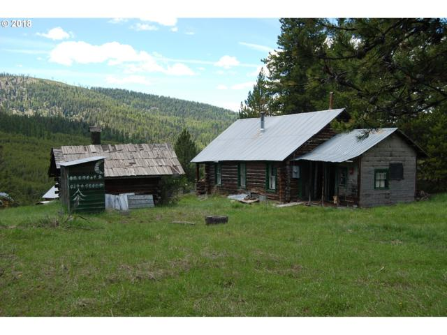 Grant St, Granite, OR 97877 (MLS #18514439) :: R&R Properties of Eugene LLC