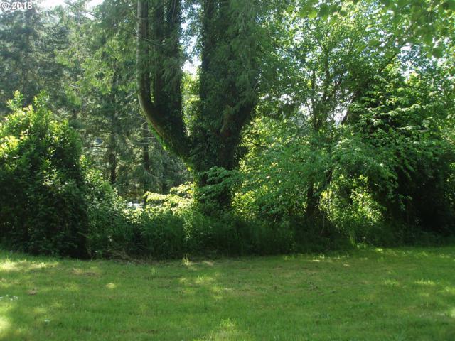 E Alsea Hwy, Tidewater, OR 97390 (MLS #18514625) :: McKillion Real Estate Group