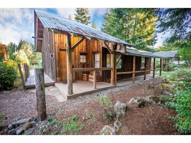 45145 SE Wildcat Mountain Dr, Sandy, OR 97055 (MLS #18518304) :: Portland Lifestyle Team