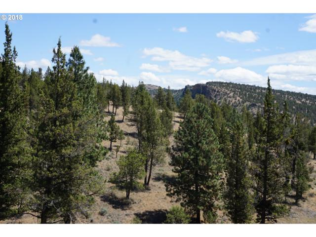 1300 NW Circle St, Prineville, OR 97754 (MLS #18520385) :: Fox Real Estate Group