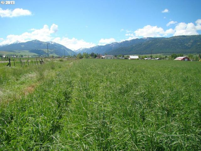 0 Jim Town Rd, Lostine, OR 97857 (MLS #18535150) :: Team Zebrowski