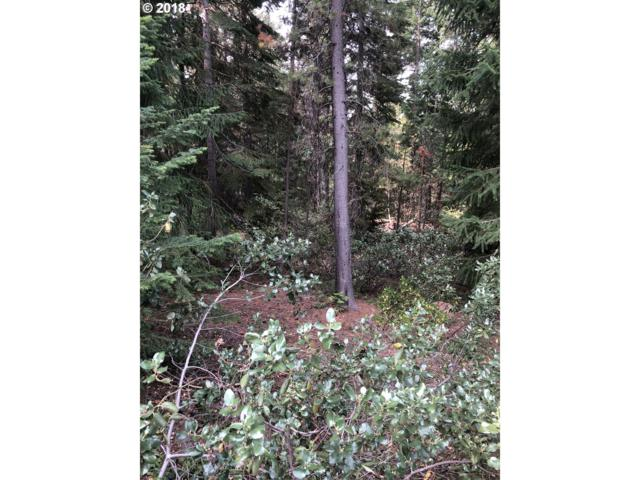 26 Diamond Peak Dr, Crescent Lake, OR 97733 (MLS #18537180) :: Hillshire Realty Group