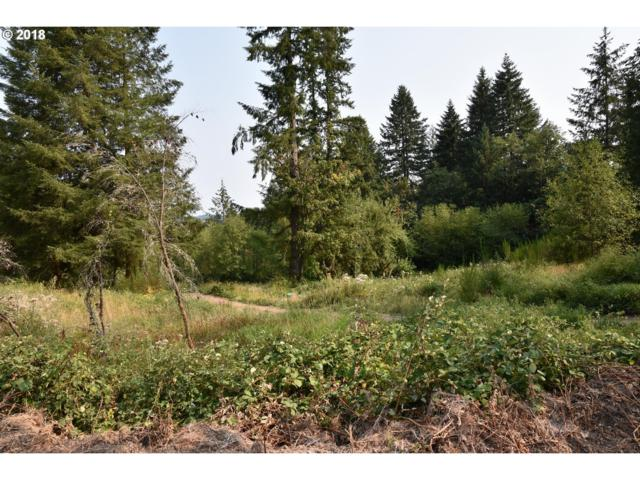 426 Butte Hill Rd, Woodland, WA 98674 (MLS #18544200) :: Hatch Homes Group