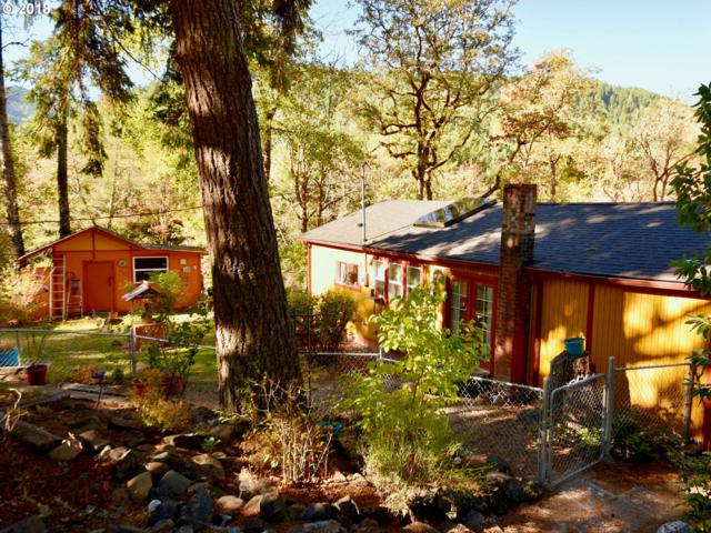 37824 Row River Rd, Dorena, OR 97434 (MLS #18546009) :: Townsend Jarvis Group Real Estate