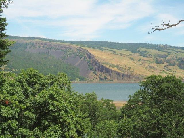 815 Fifth Ave #13, Mosier, OR 97040 (MLS #18548264) :: Townsend Jarvis Group Real Estate
