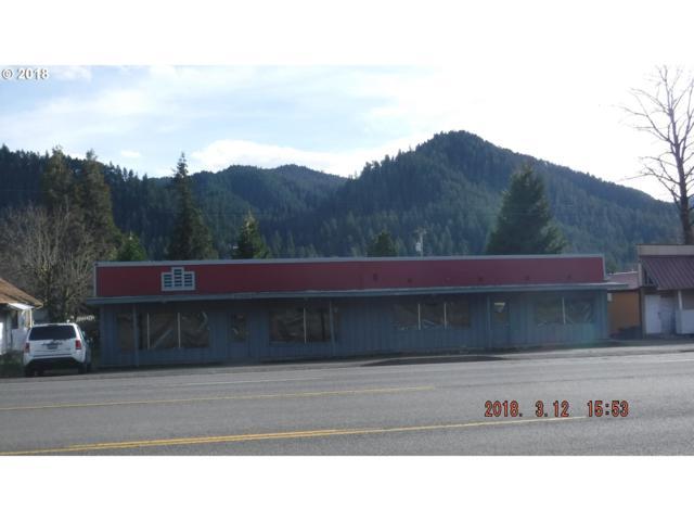 47646 Hwy 58 St, Oakridge, OR 97463 (MLS #18553329) :: Song Real Estate