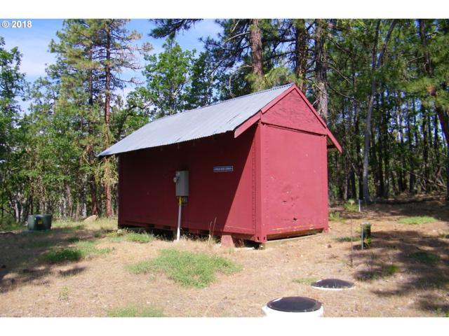 Wilderness Loop #76, Goldendale, WA 98620 (MLS #18564717) :: Stellar Realty Northwest