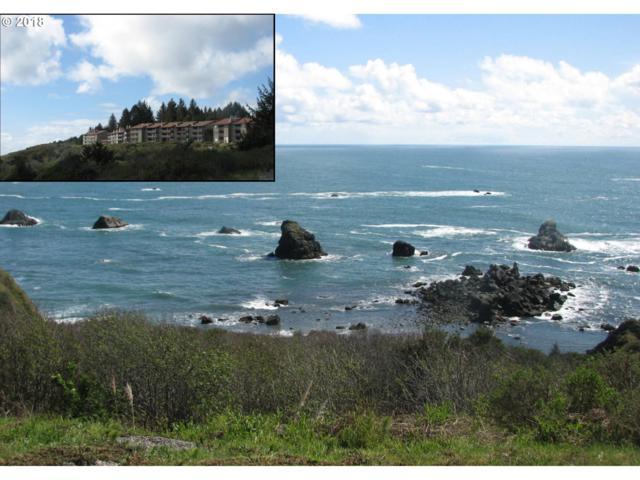 17744 N Hwy 101 D-110, Brookings, OR 97415 (MLS #18568323) :: McKillion Real Estate Group