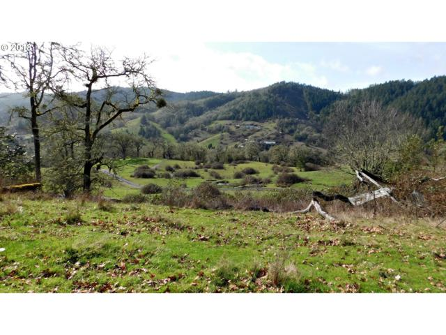 0 Willis Creek Rd, Winston, OR 97496 (MLS #18570244) :: Keller Williams Realty Umpqua Valley