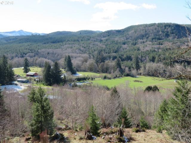 Skees Rd #27, Lebam, WA 98554 (MLS #18575881) :: Harpole Homes Oregon