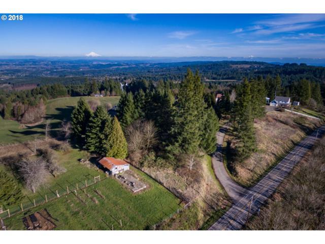 0 NE Bald Peak Rd, Hillsboro, OR 97123 (MLS #18579132) :: Beltran Properties at Keller Williams Portland Premiere