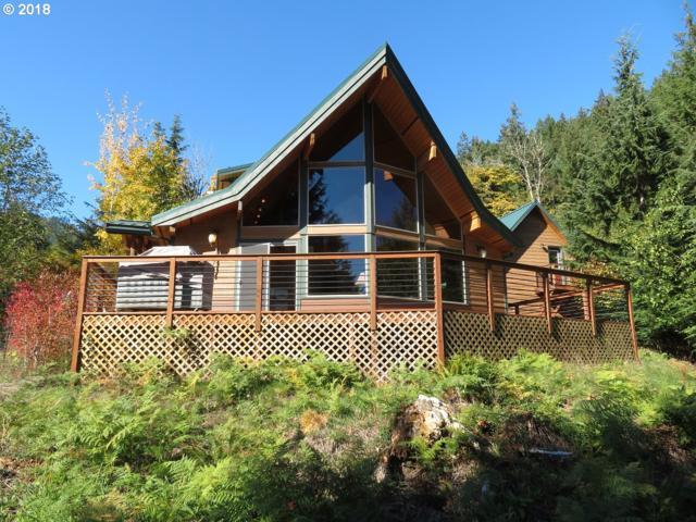 172 Blue Bonnet Ln, Randle, WA 98377 (MLS #18590637) :: Hatch Homes Group