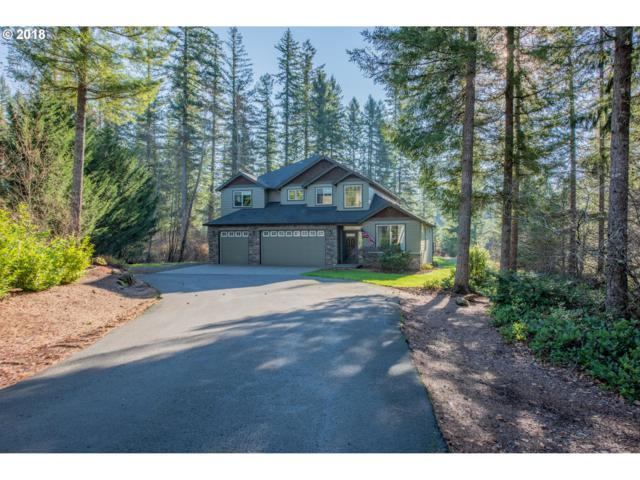 22001 NE 233RD St, Battle Ground, WA 98604 (MLS #18596503) :: Matin Real Estate