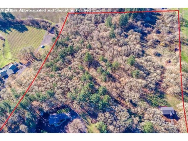 19045 NE Kings Grade, Newberg, OR 97132 (MLS #18602180) :: McKillion Real Estate Group